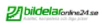 Logo Bildelaronline24