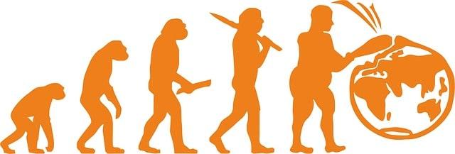 Människans evolution